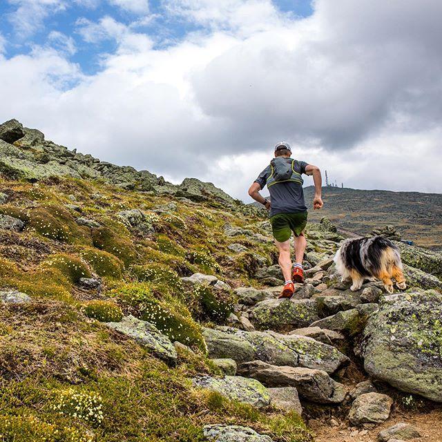 Spring on the Jewel Trail 🌱 #runthewhites #whitemountainsnh #mountwashington