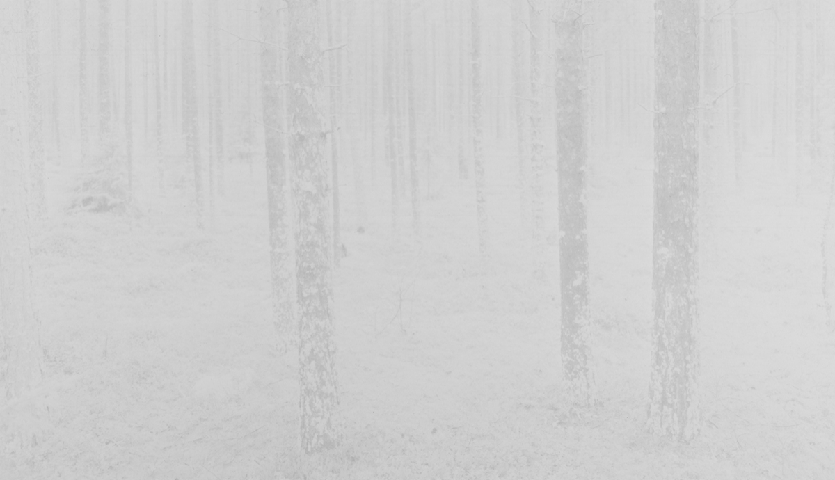 Image © Witho Worms. Finland 014, 2014. Three layered carbon print. Paper size: 13 3/4 x 21 1/2 inches. Image size: 11 1/8 x 19 inches. Unique. Courtesy of the artist and L. Parker Stephenson Photographs.