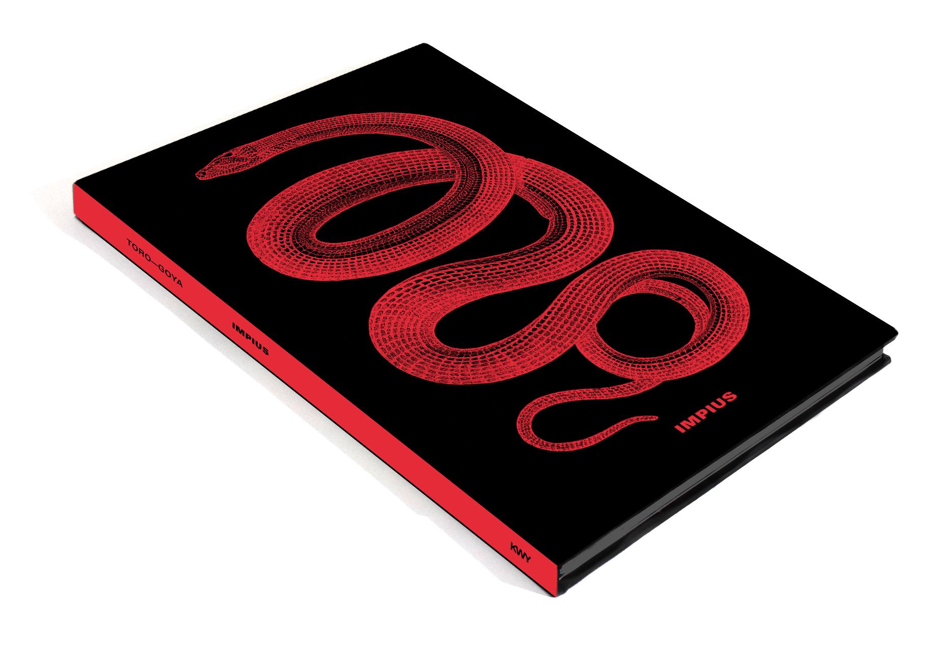 Libro Impius promo.jpg