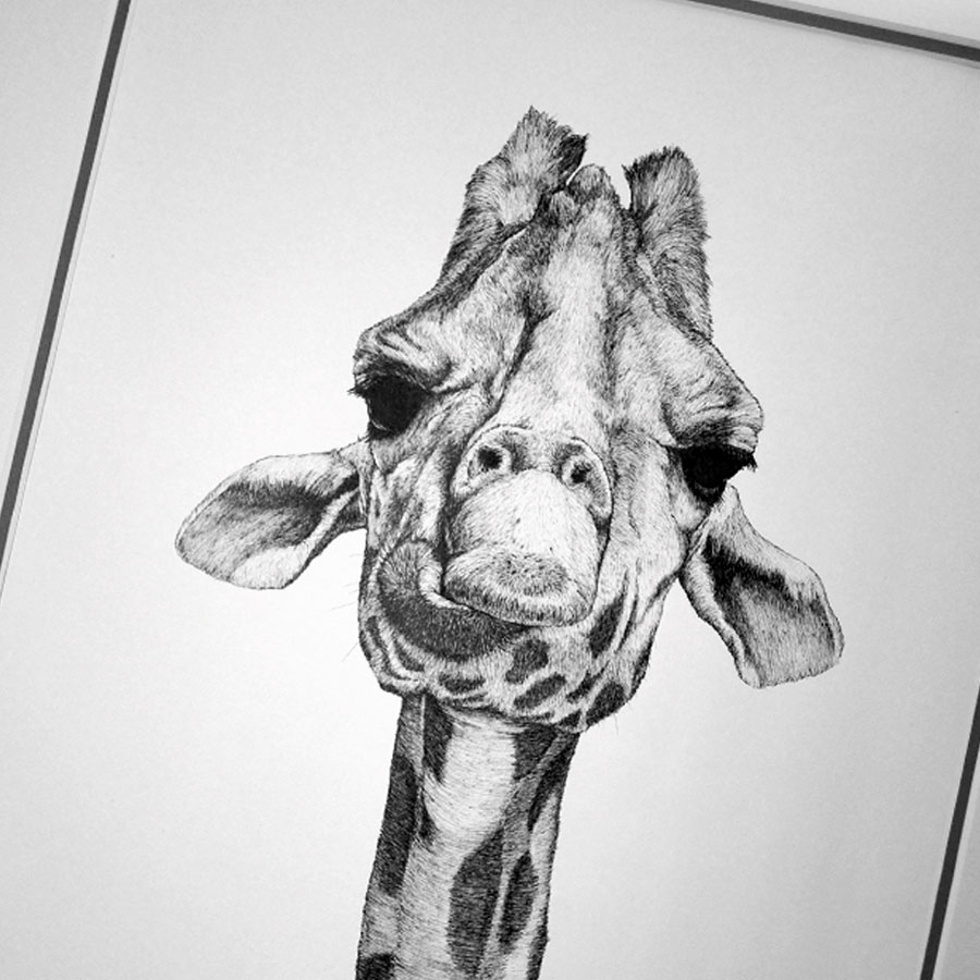 Serengetti - Ilustration