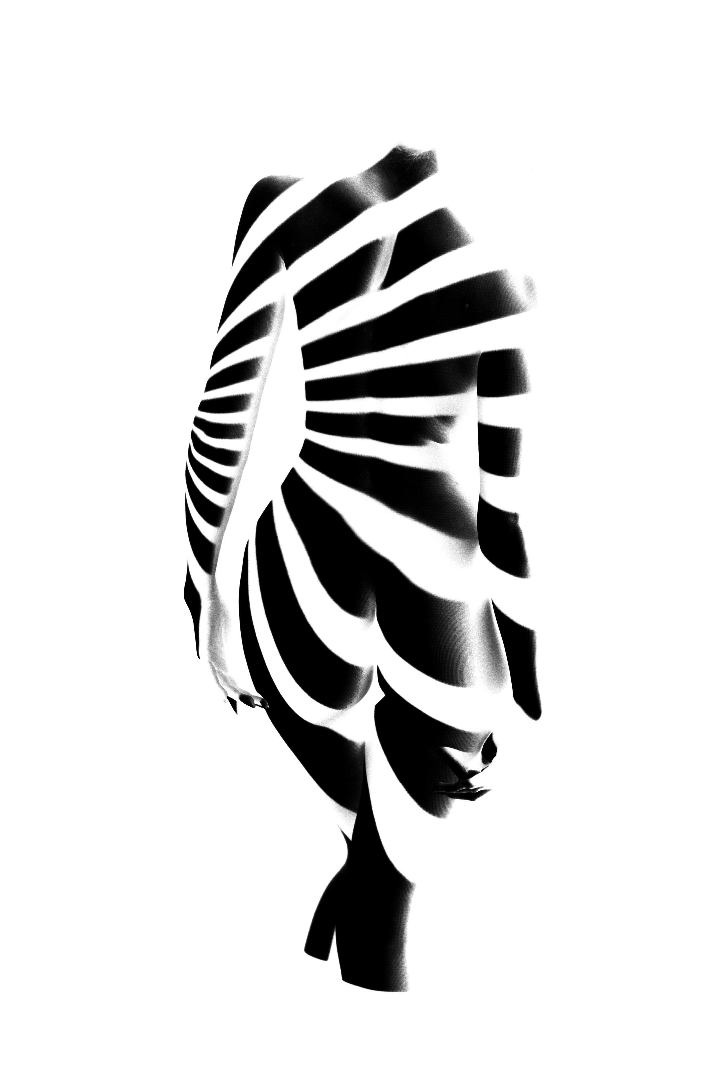 Aaron Patton - Taper - 20inx30in - Framed Giclee Print - 1 of 3 - 2015 - $1800.jpg