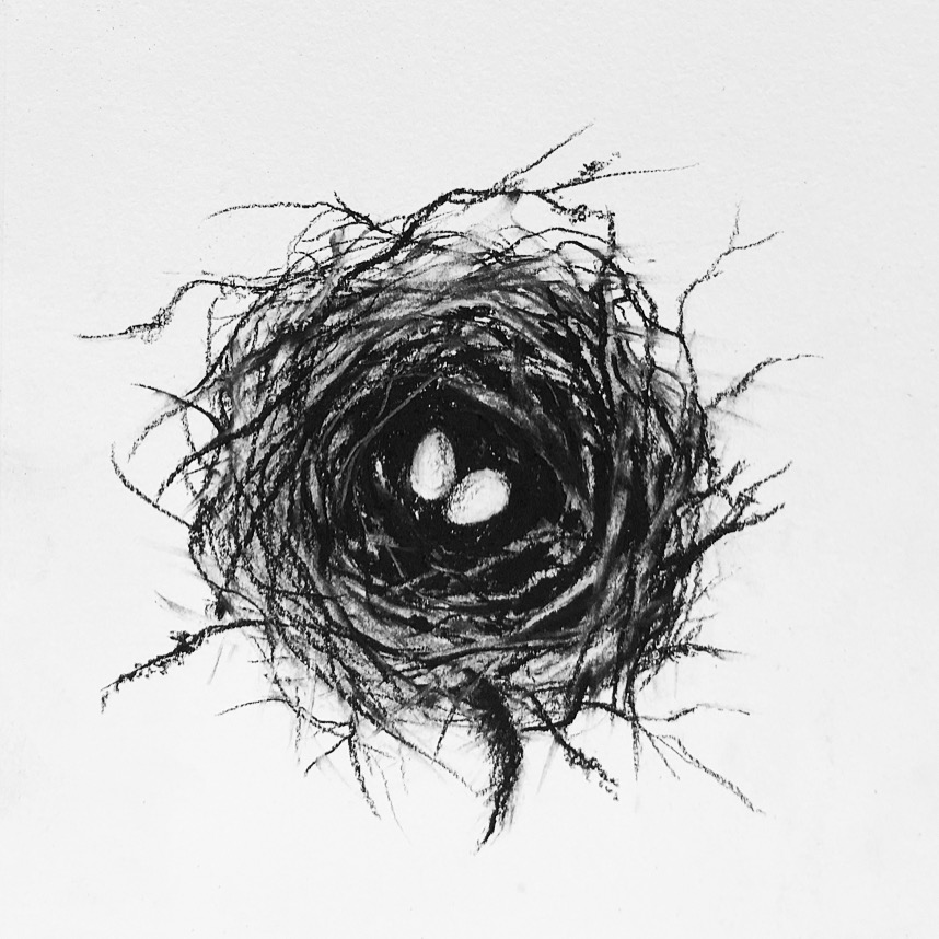 Cindy Lisica Gallery - Rachel Gardner - _Nested_ - 10 x 10 inches - oil and charcoal on paper - 2018 - $200.JPG