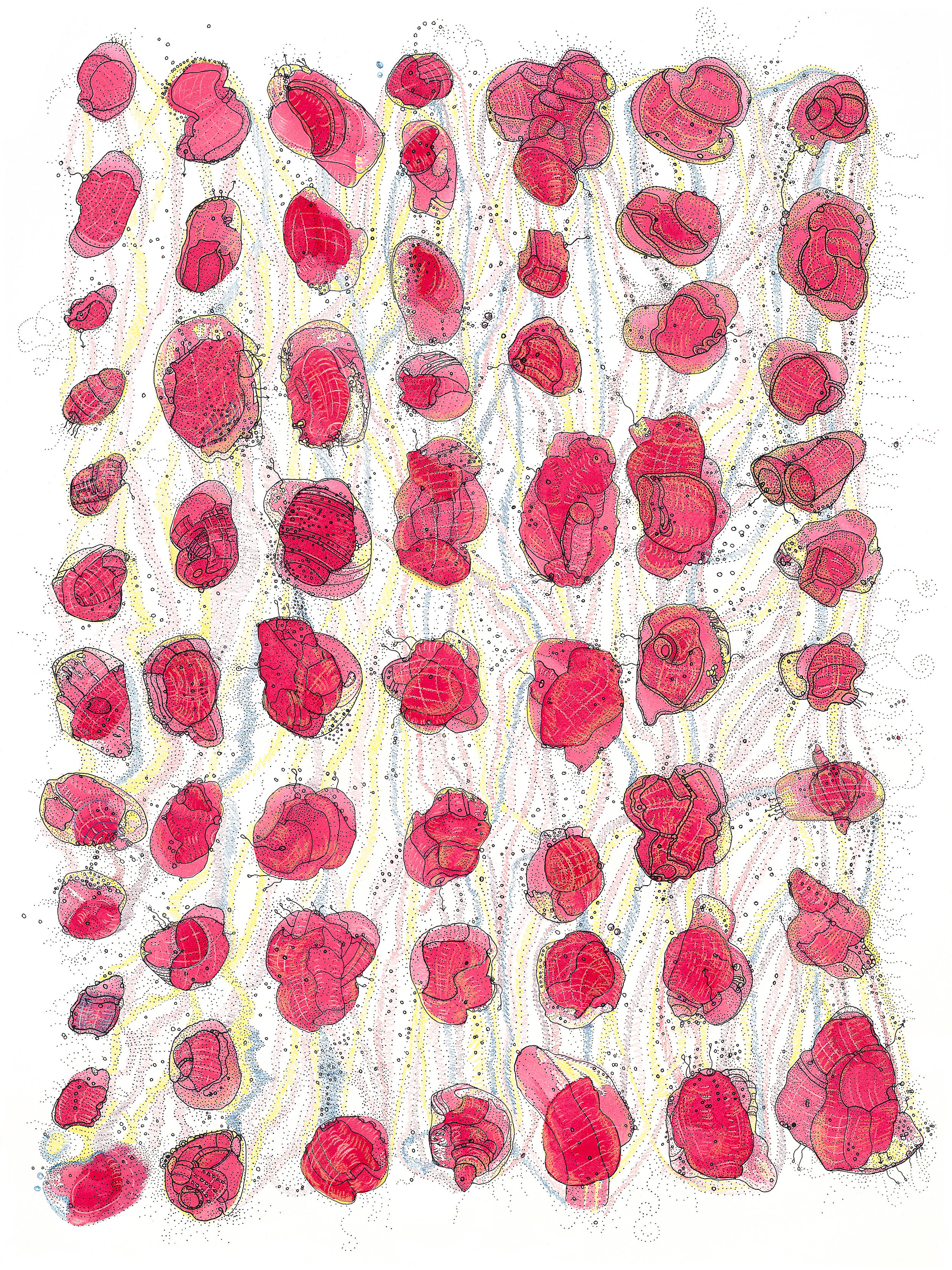 RogelioMaxwell-IntercellularPathwaysAndAdaptationResistance-2010-ArchivalPigmentPrint-18x24.jpg