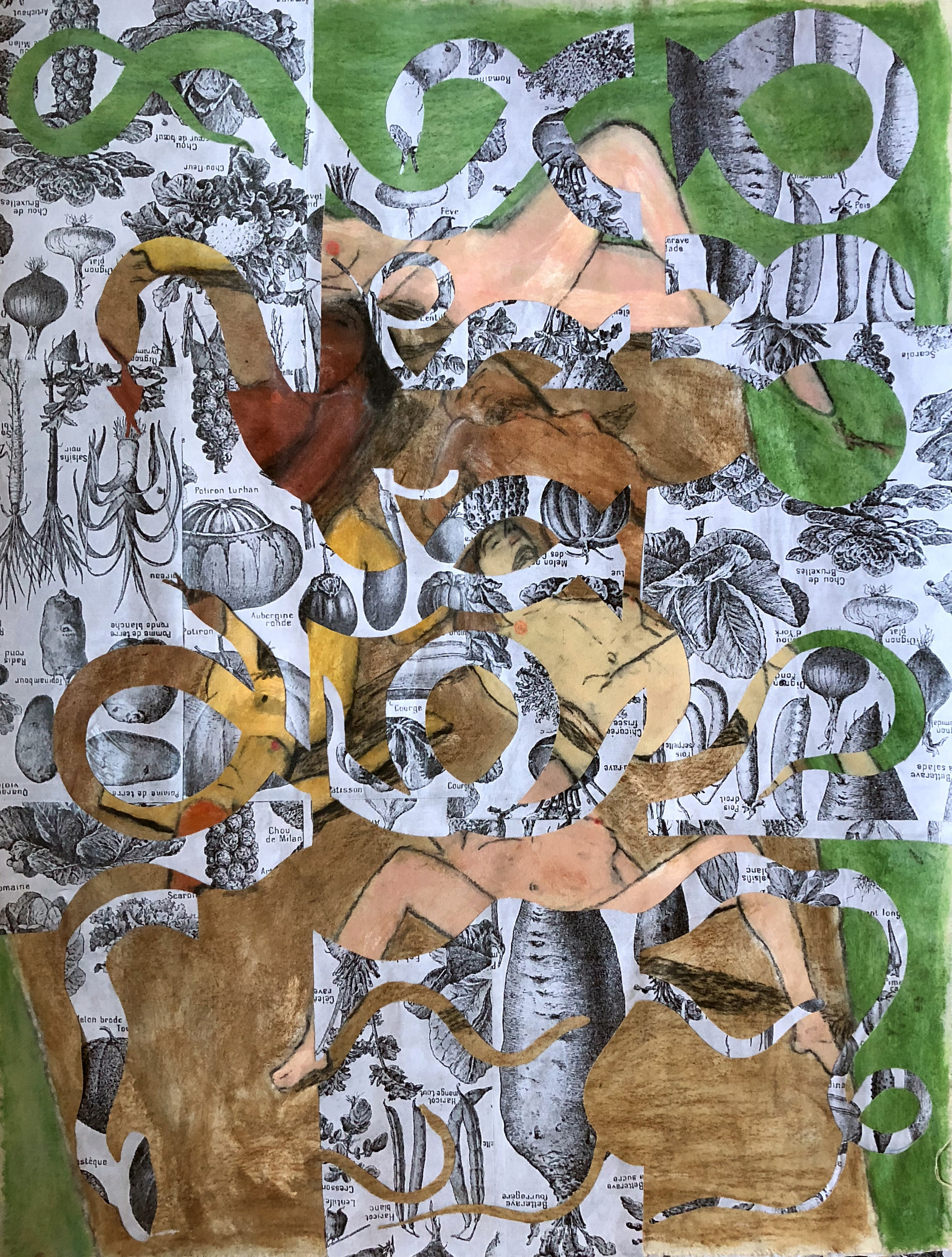 TonyMichaleEstrada - Male Gaze in the Garden of Eden 2 - 43 x 31.5 - collage on canvas_ pastels and photo prints - 2018 - $700.jpg