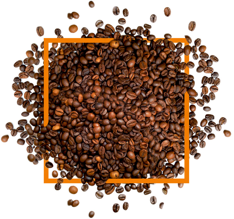 DON'T MISS OUT! - Experience the smooth, rich and decadent taste of Australian coffee