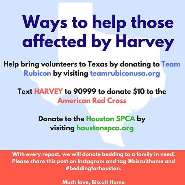 so incredibly generous. for every repost, @biscuithome is donating bedding to families affected by #harvey. please regram + consider donating to one of these causes. ❤️ #beddingforhouston #lovemycity #houston