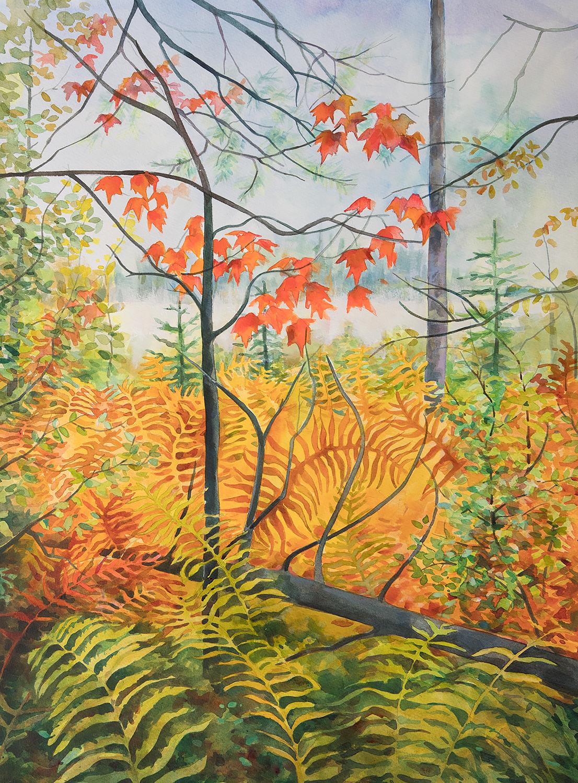 """Fall Hike - Heron Marsh Trail"""