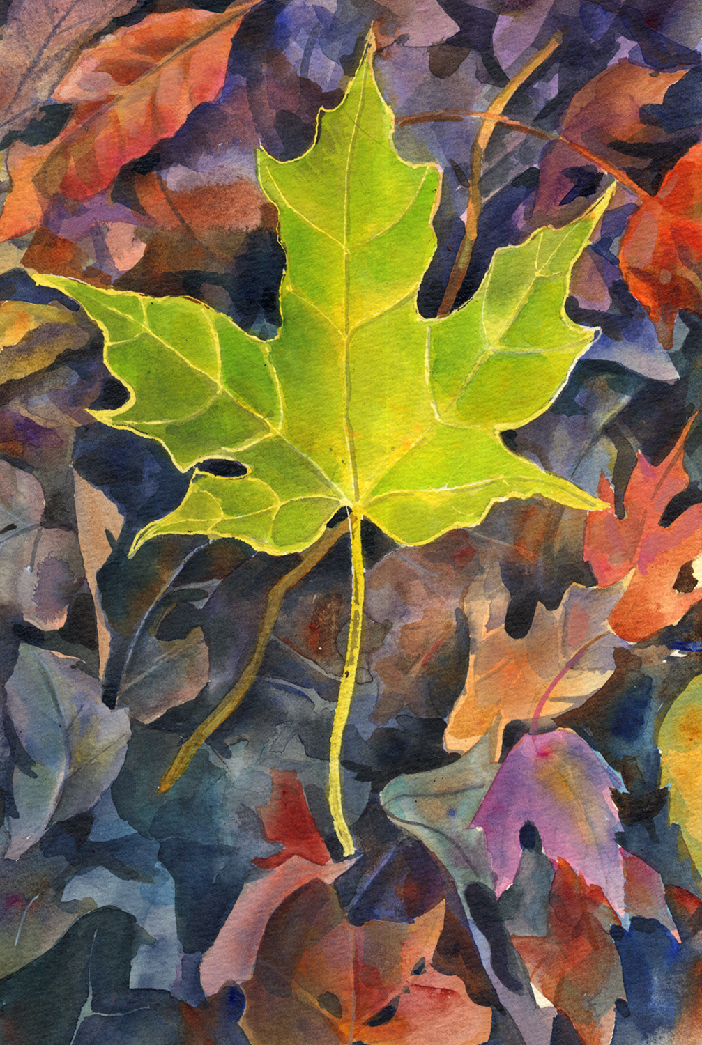 """Green Maple Leaf"""