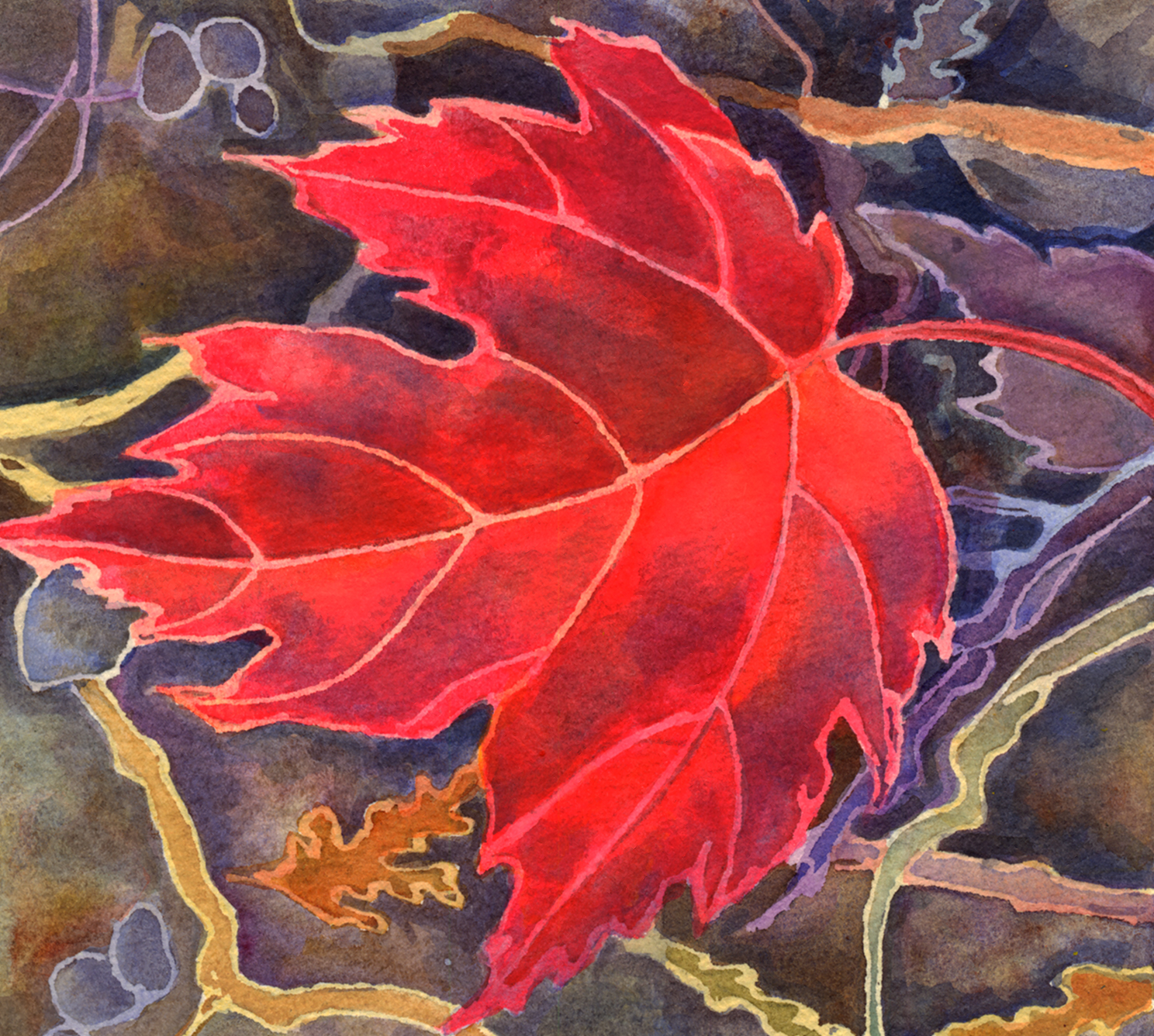 """Red Maple Leaf"""