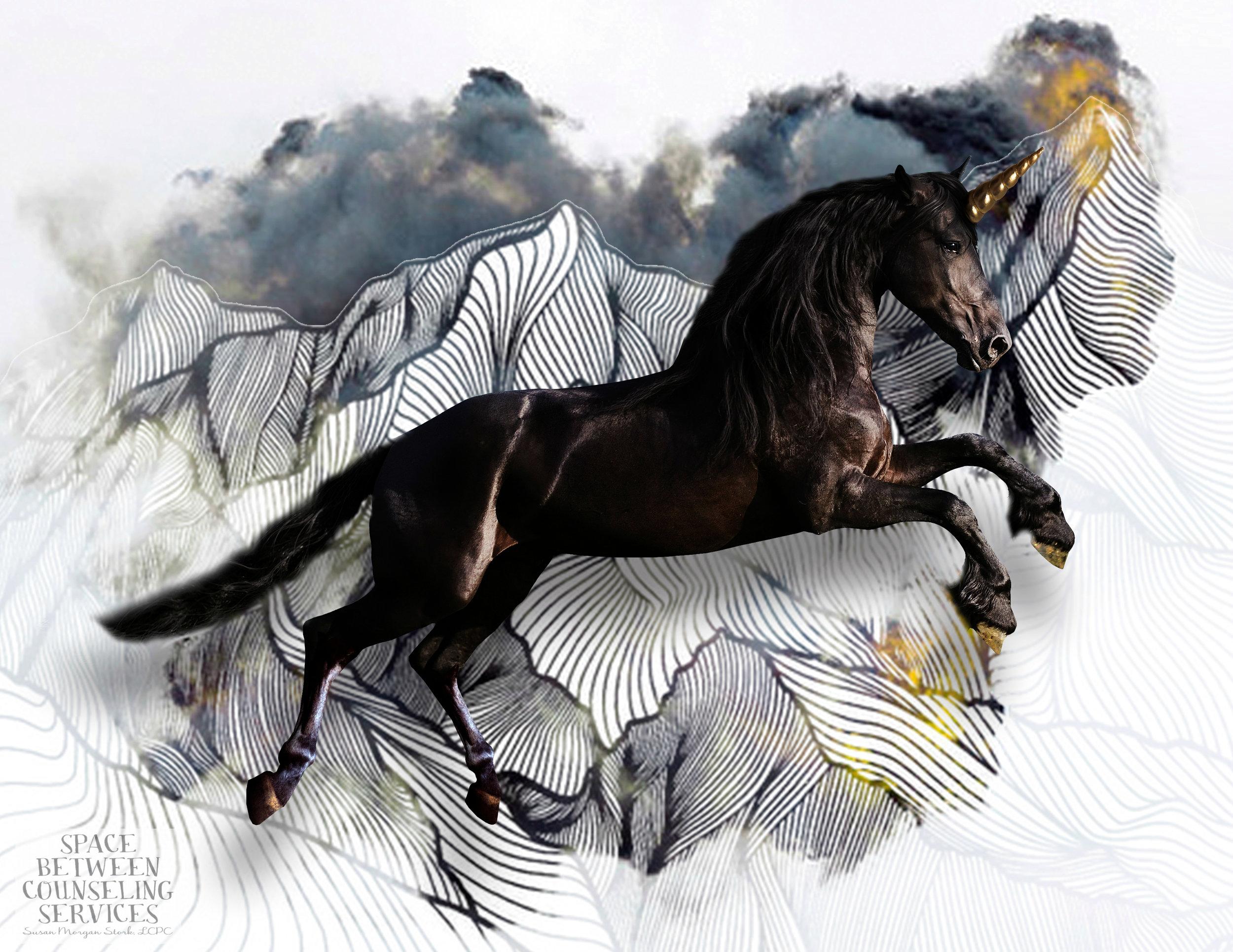 SBCS unicorn-1.jpg