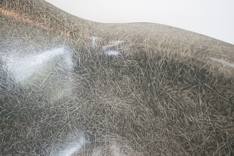 gray_fibers.jpg