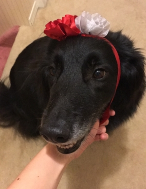My 9-year-old, Zora, being festive and all.