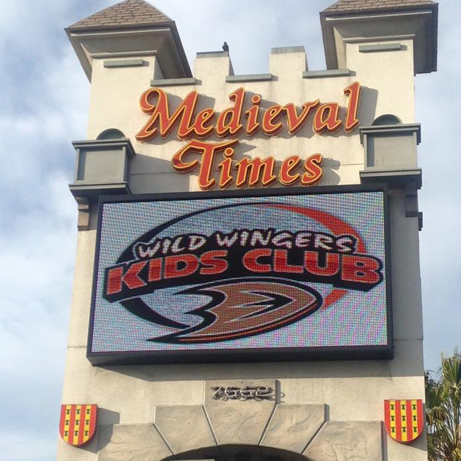 Exclusive Wild Wingers Kids Club Party at Medieval Times