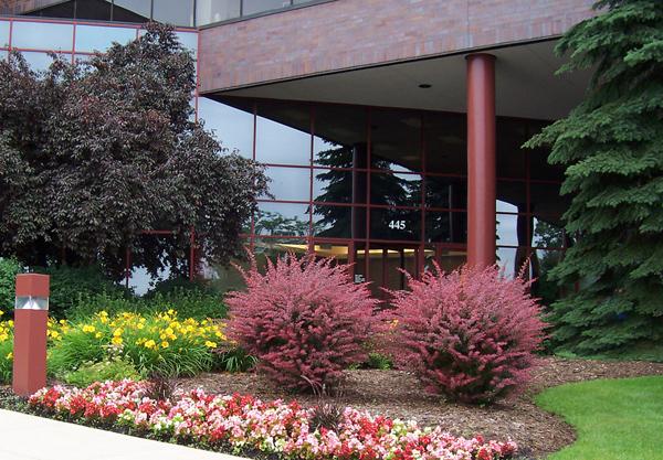 Column photo 2.jpg