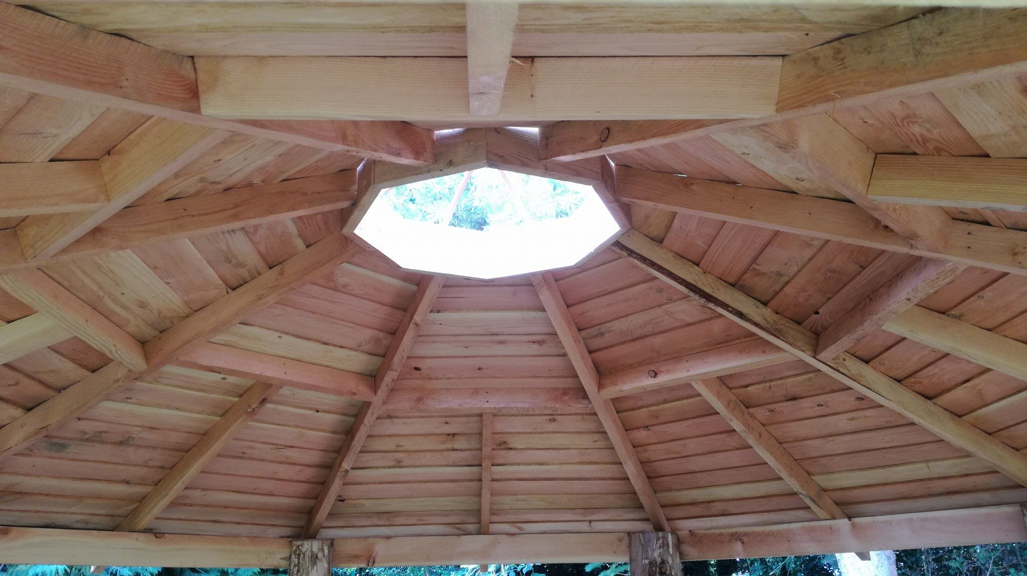 Detail of Larch Roof