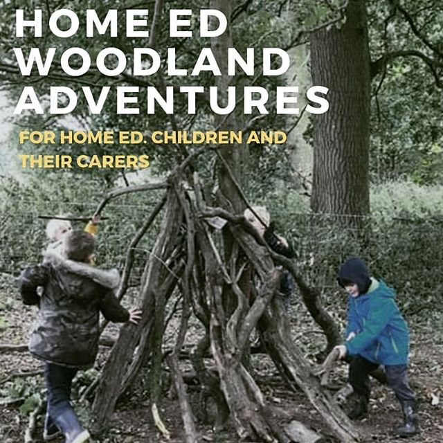 Free taster session next Thursday 13th June 12.30- 2.30! Booking is essential via www.rootedforestschool.co.uk  The next block is starts 20th June for 4 weeks. #outdoorplay #forestschool #herefordshire #homeeducation #homeeducationuk #outdoorlearning