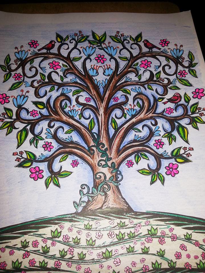 Sacred Nature - A Coloring book for Adults