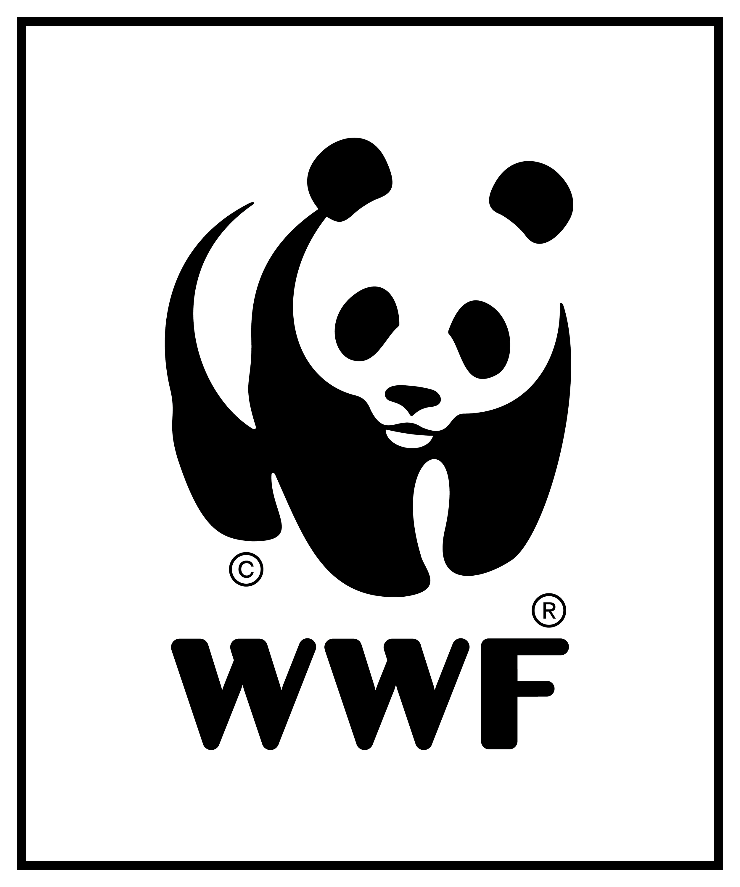 WWF-logo-closed-for-photos-color-background-PNG.png