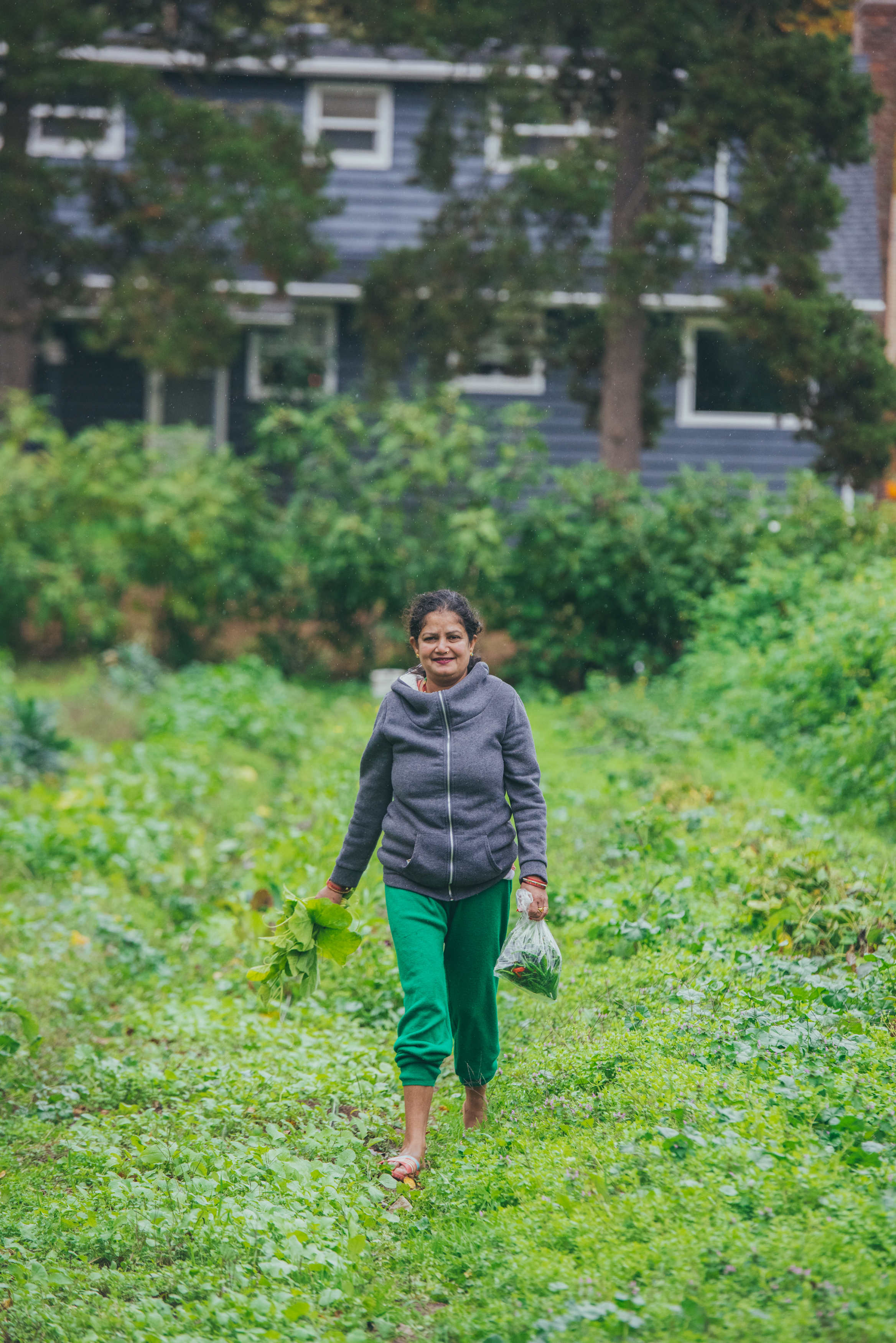Refuge Garden - Mercy Corps NW Another Look 10-30-15 2015-27.jpg