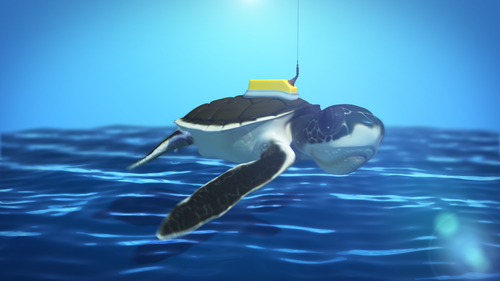 Sea Turtles: The Last Years - 0;00;07;00Modeling, Texturing, Rigging, Animating, Lighting, Rendering, CompositingMaya, Photoshop, Headus, After EffectsRendered beauty and AO layers of turtle and BG ; worked with producer and scientist to assure correct anatomy and movement, along with numerous reference images