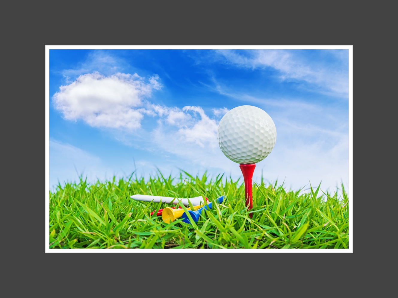 Fore! Let Meetings USA score you big points with your golf tournament. Our team has vast knowledge of courses all over the country and can assist from start to finish.