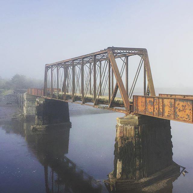 Foggy Fundy morning