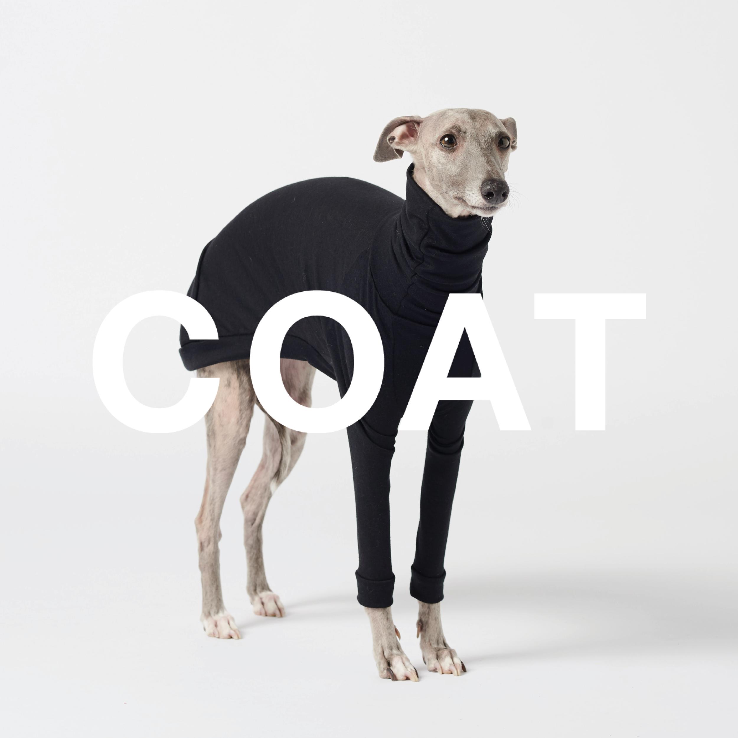 Coat1.png