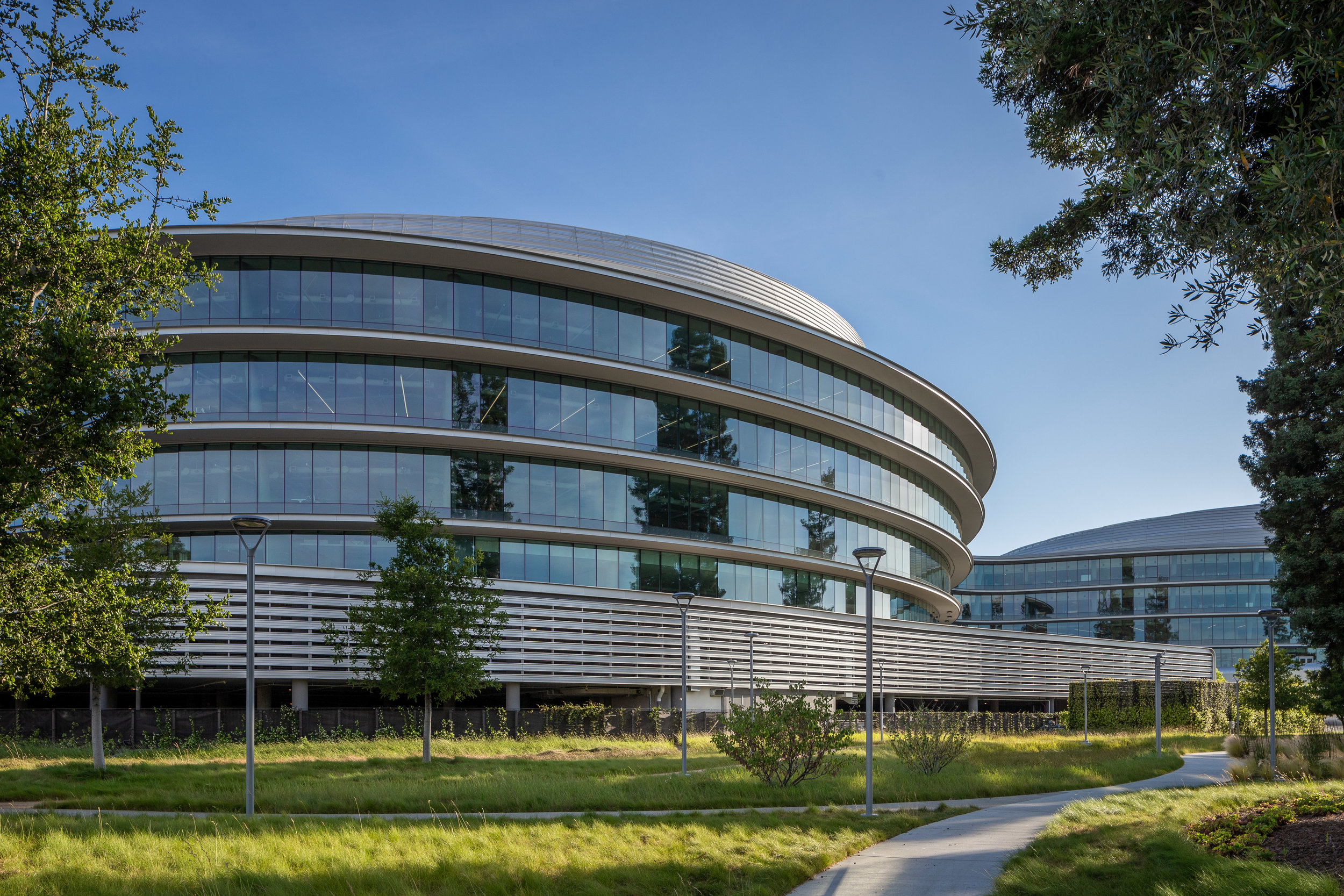 Apple Campus 3 -  HOK