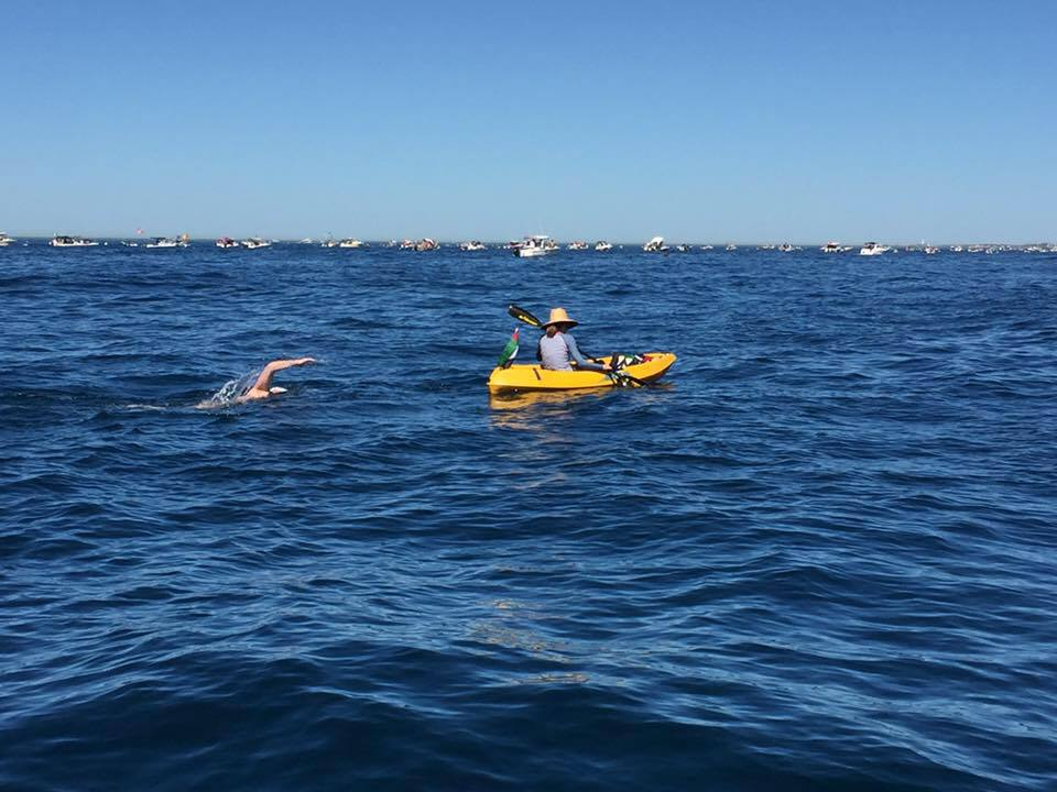 On the way to Rottnest Island during the  Rottnest Channel Swim  in February 2016 (Photo: Jane Scott)