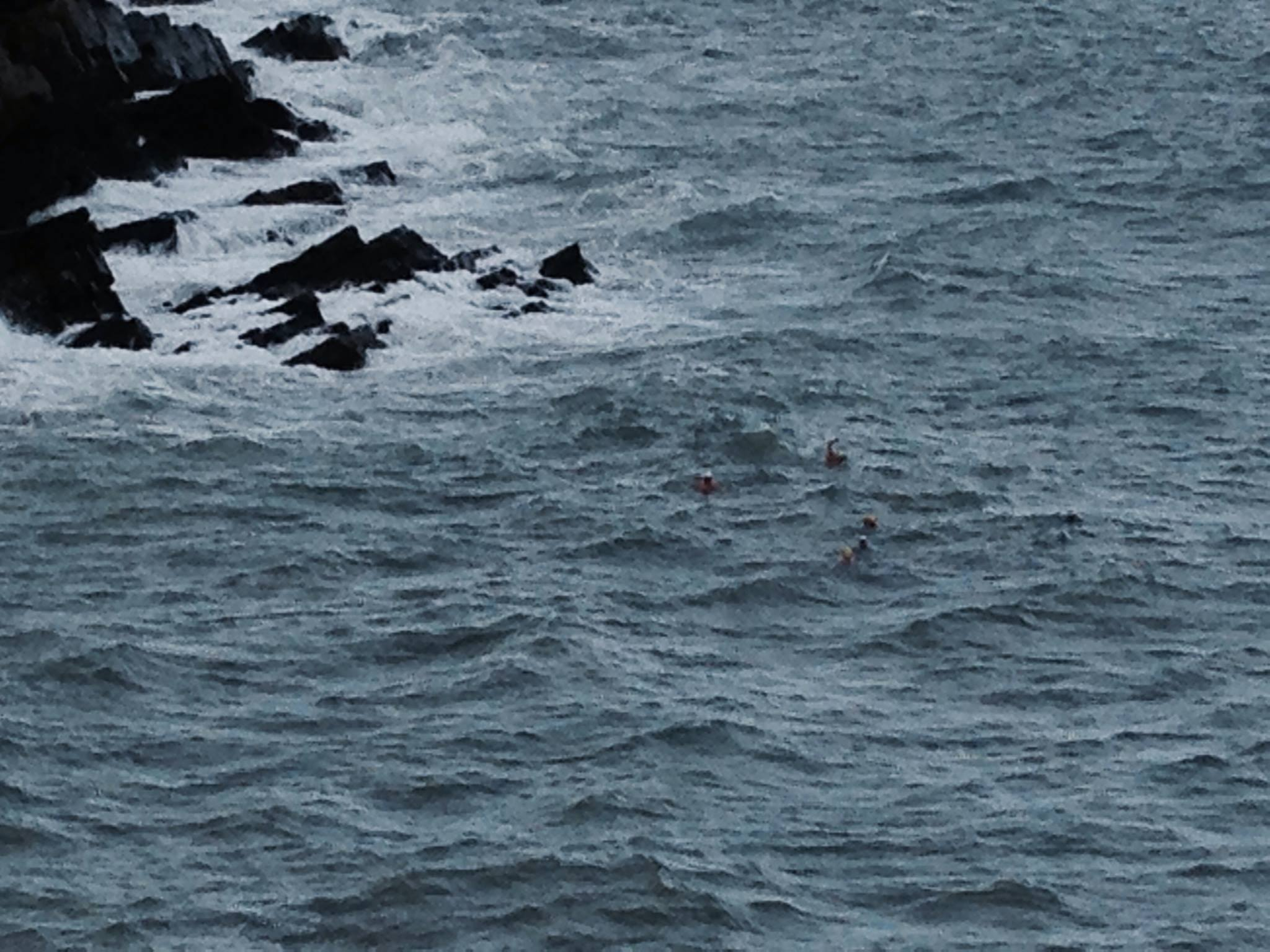 Spot the Sandycove swimmer (Photo: Dee Byrne)