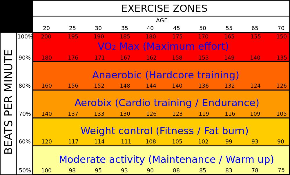 Male Heart Rate (in beats per minute) Vs Age with VO2 max (%). Source: www.allfitnessweb.com