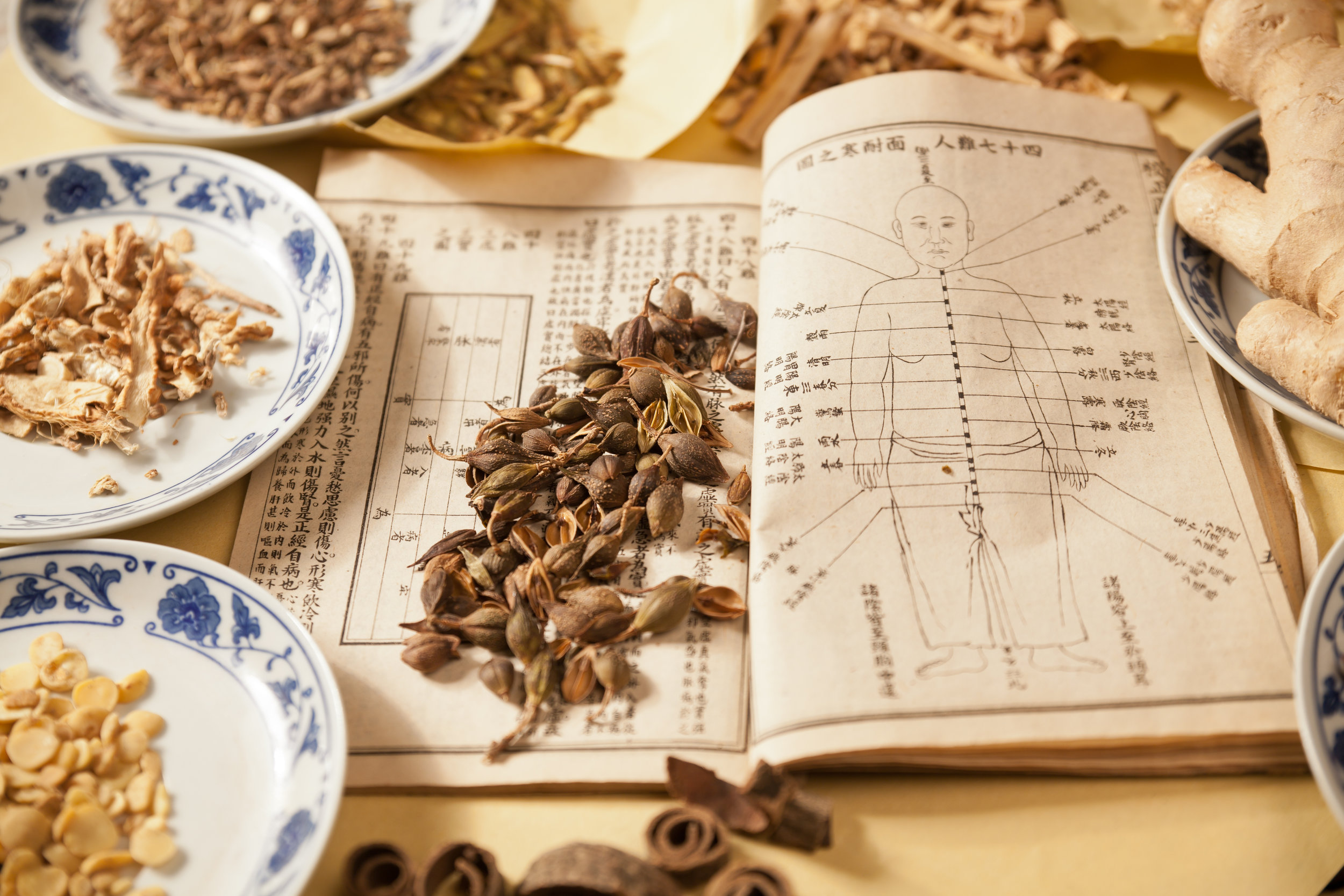 Chinese Medicine - acupuncture tuina herbs diet consultation