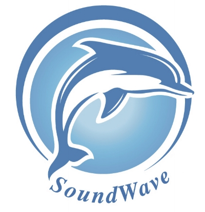 Soundwave logo copy.jpg
