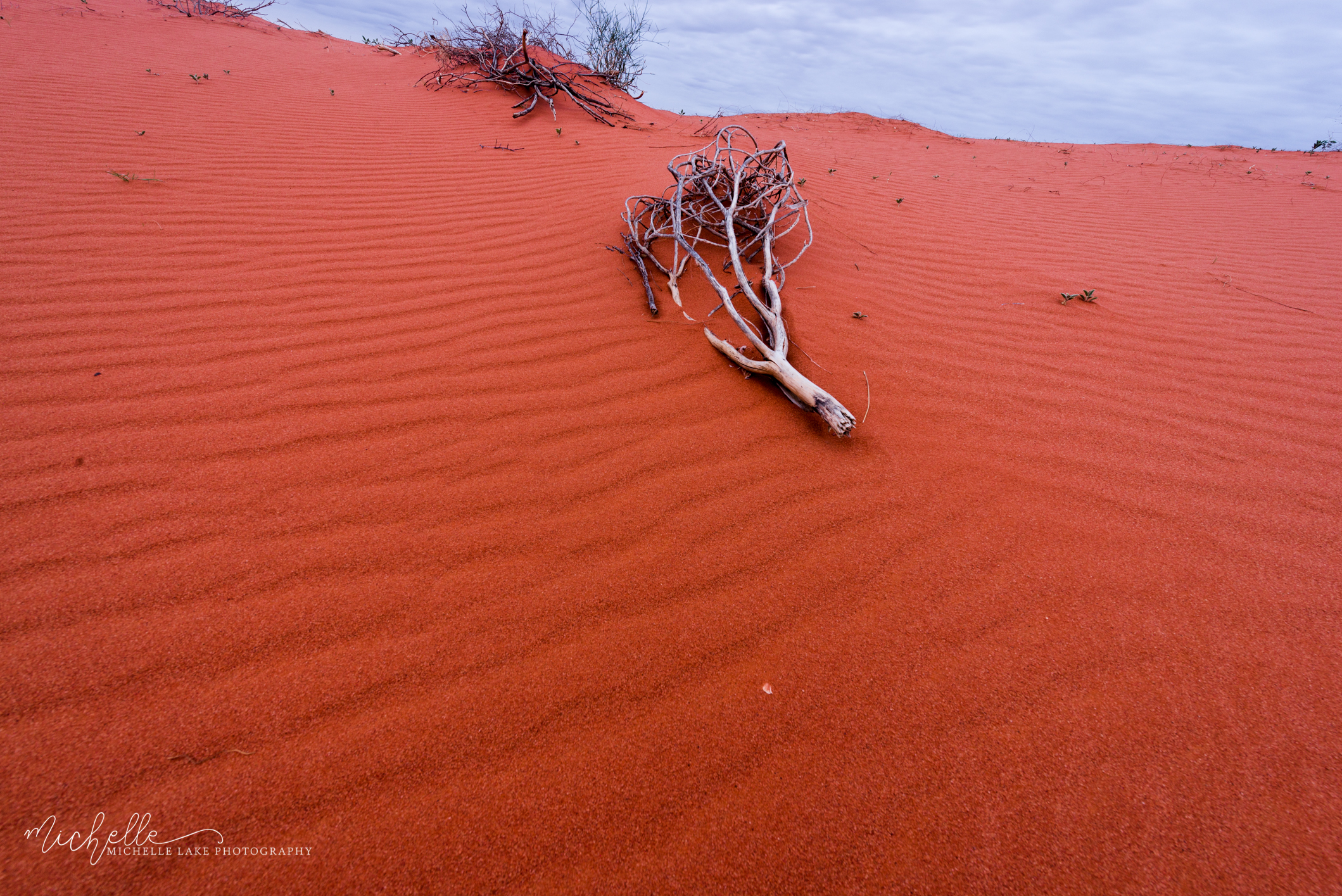 Red sand dune - William Creek