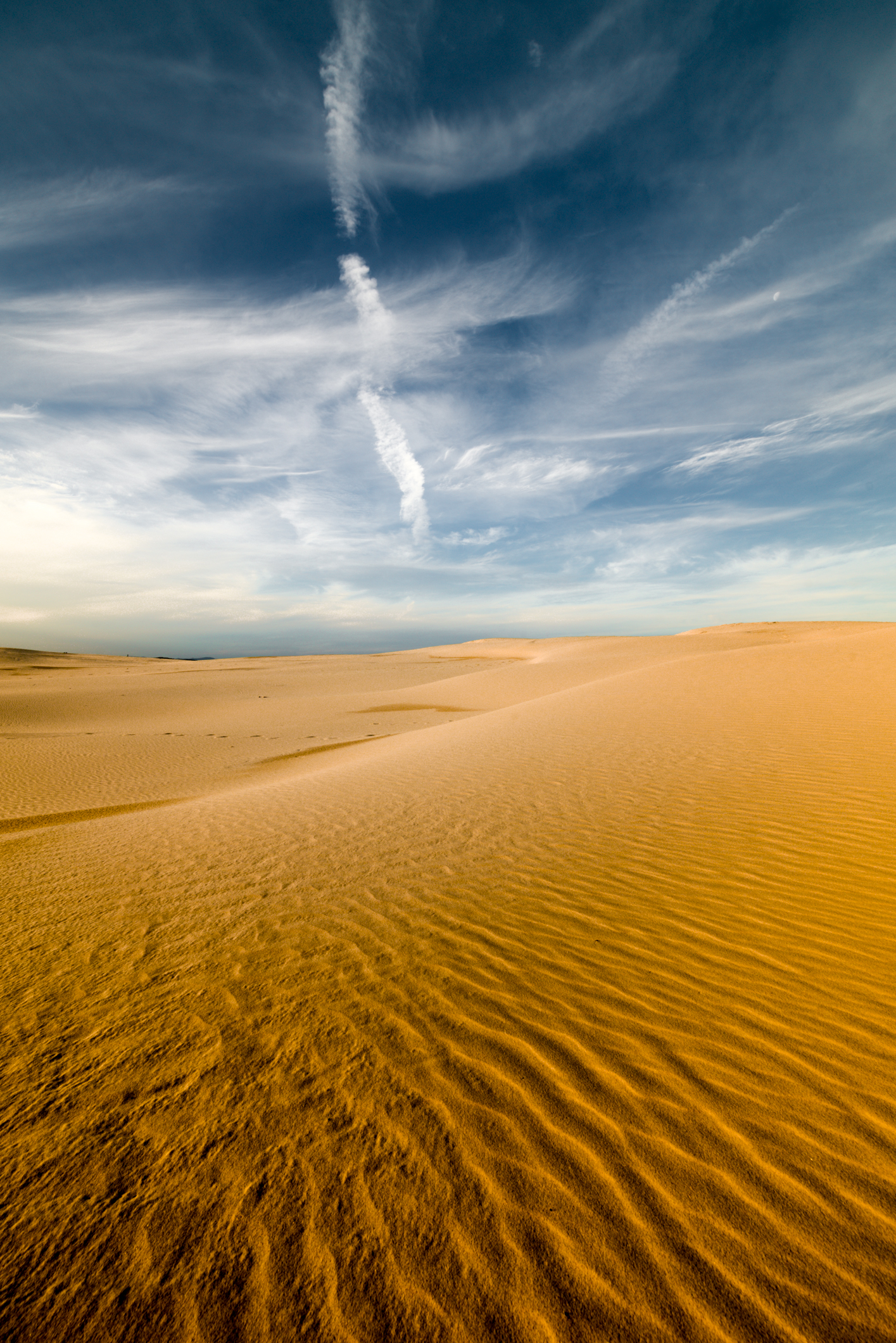 - Stockton Sand Dunes -  Michelle Lake ©