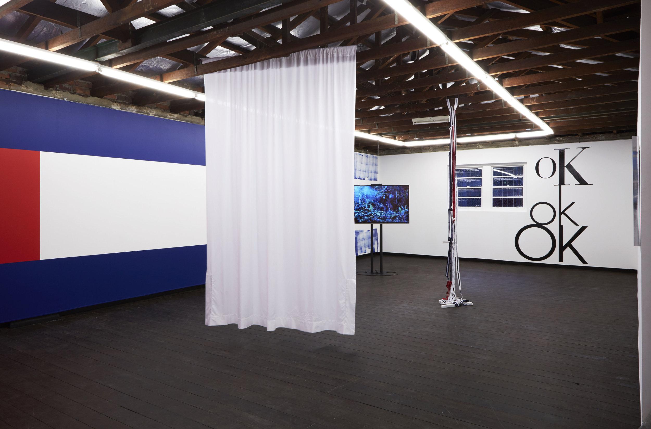 Installation view,  Coconut Republic , 2017, Firstdraft, Sydney. Photo: Zan Wimberley. Copyright JD Reforma