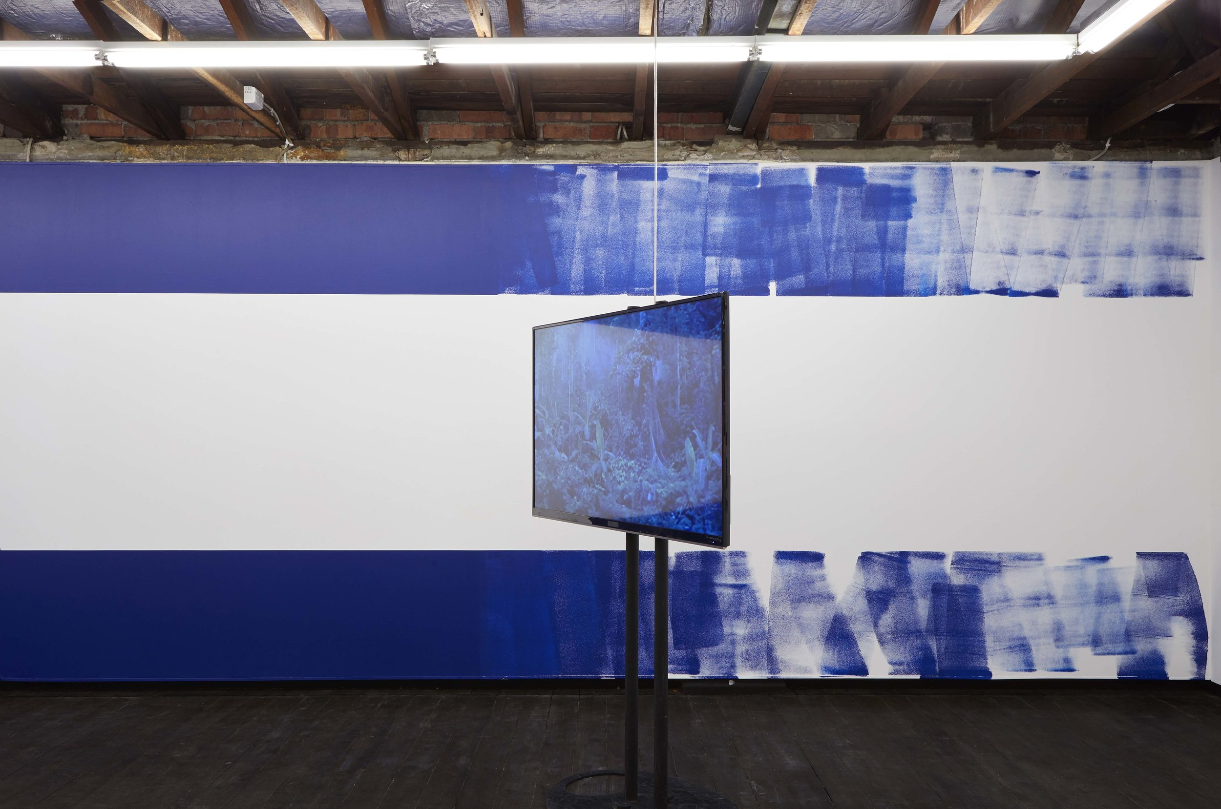 Coconut Republic , 2017, single-channel video with sound, 8 minutes 32 seconds,installation view,  Coconut Republic , Firstdraft, Sydney. Editor: Kate Blackmore. Photo: Zan Wimberley. Copyright JD Reforma