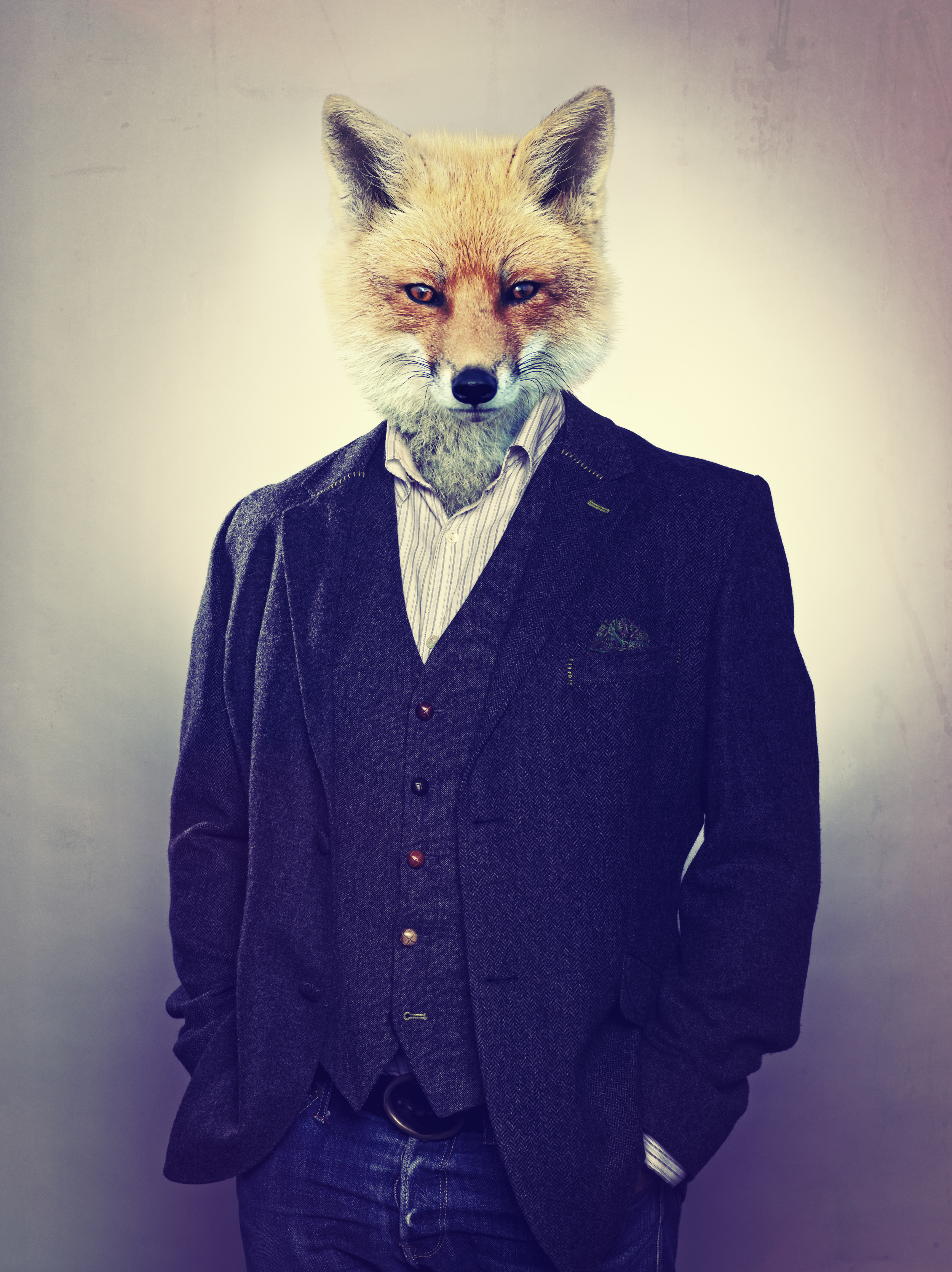 FOX_ANIMAL_HEAD.jpg