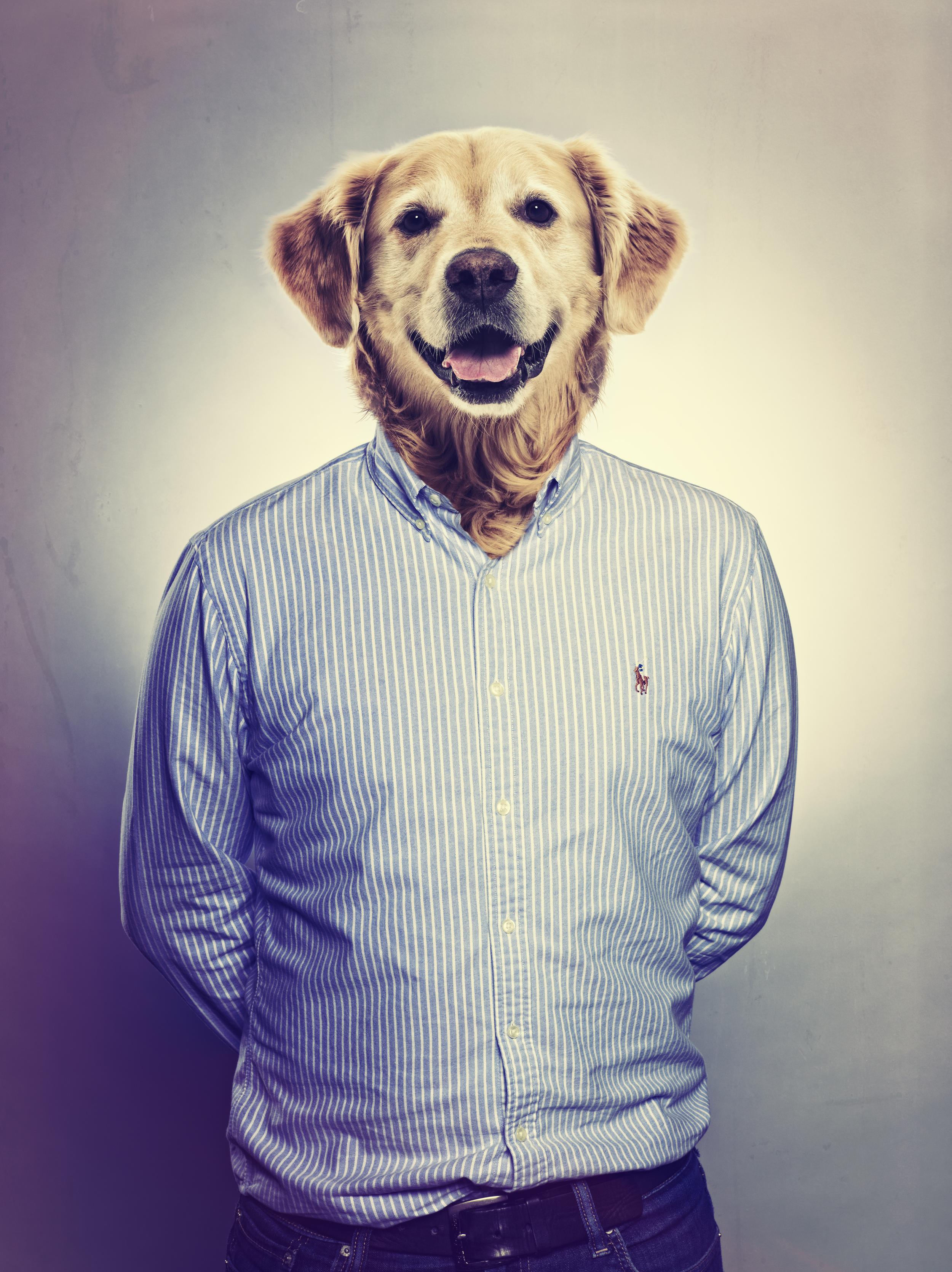 GEORGE_ANIMAL_HEAD.jpg