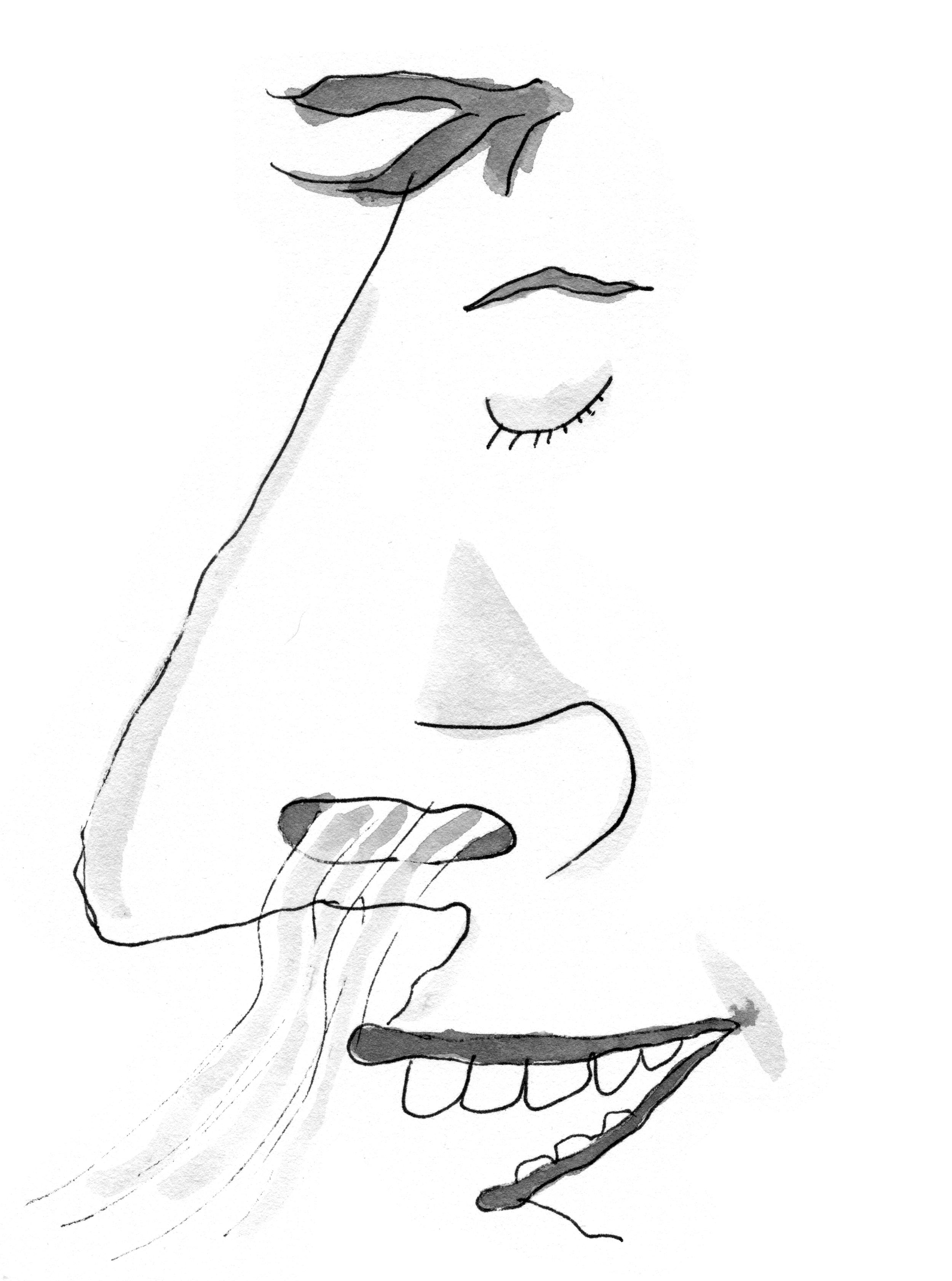 smellhole