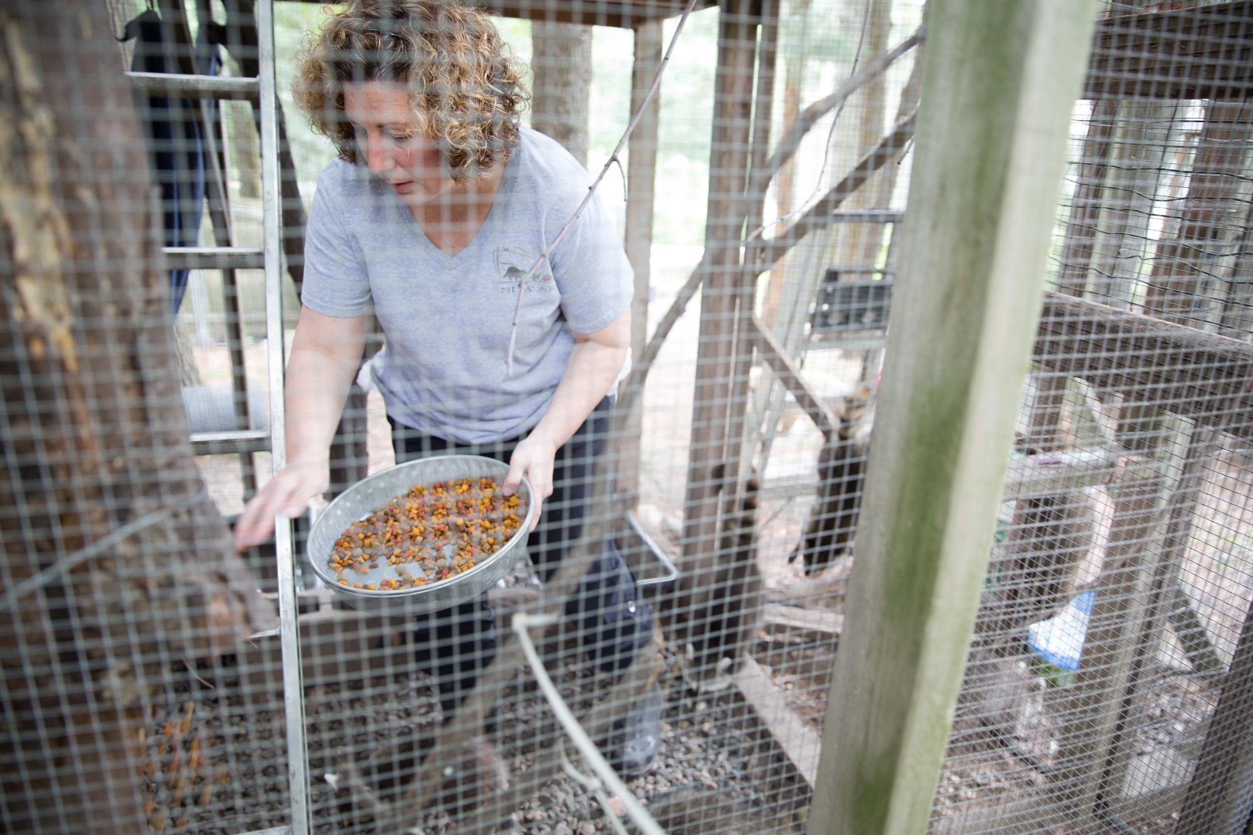 wildlife rehab06.jpg
