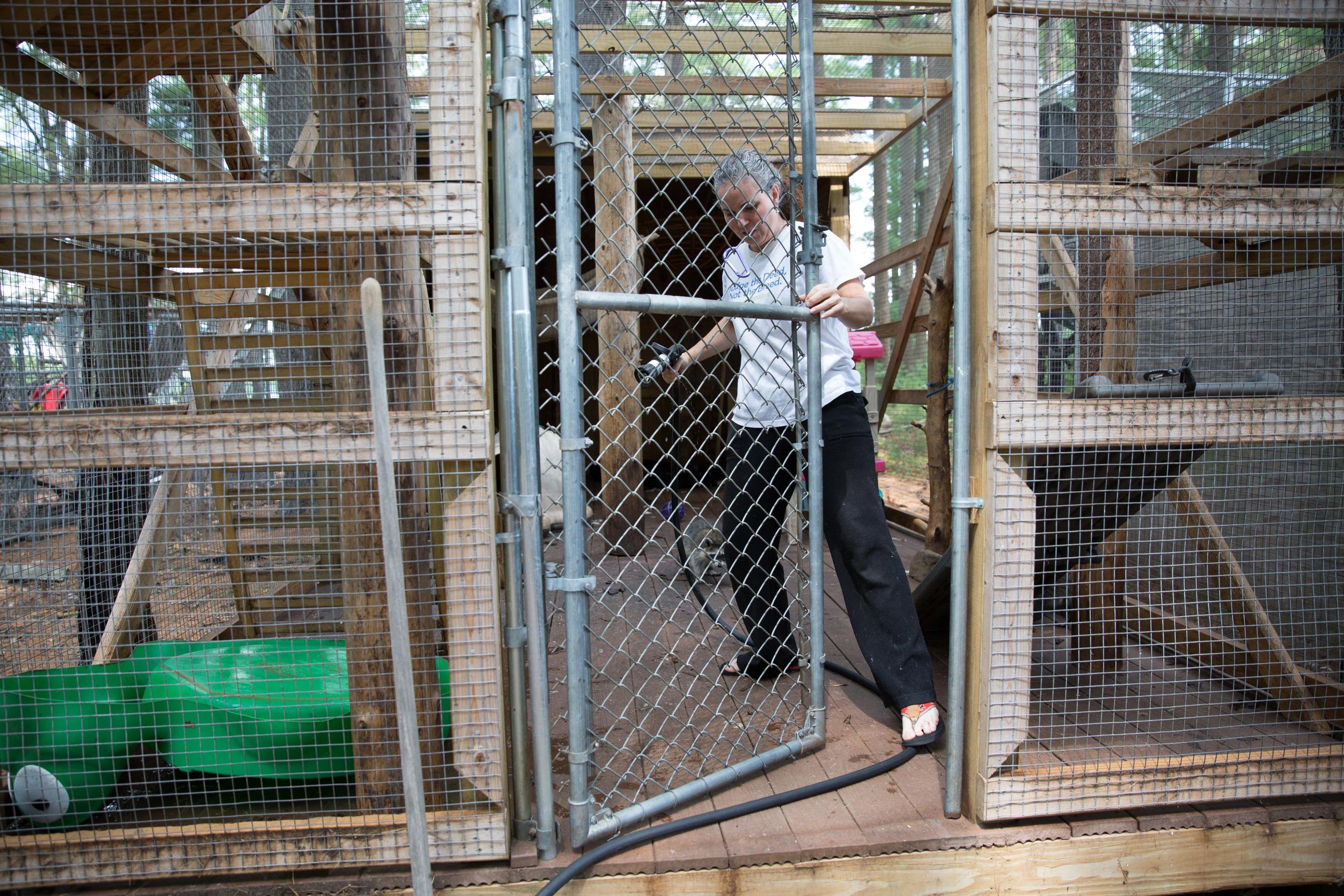 wildlife rehab17.jpg