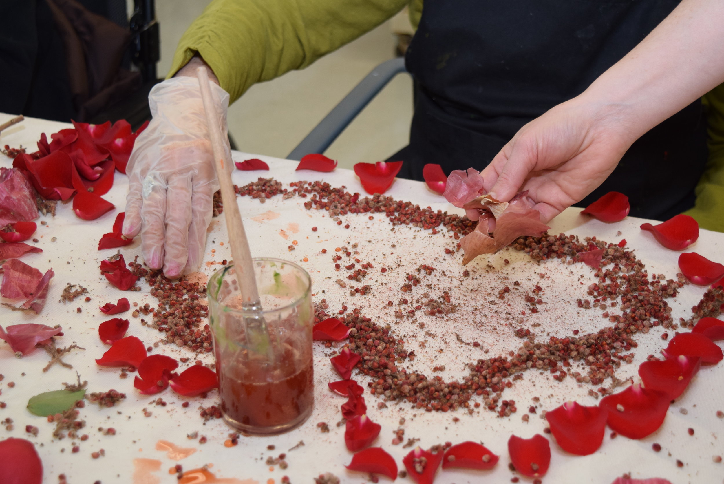 Eco-printing workshop with residents of the  Perley and Rideau Veterans' Health Centre  (Ottawa, On) under the guidance of Creative Arts Instructor Gillian King and Spiritual Health Practitioner Jessie Stephenson, in collaboration with Therapeutic Recreation Creative Arts - Horticultural Services and Support Services. 2019.