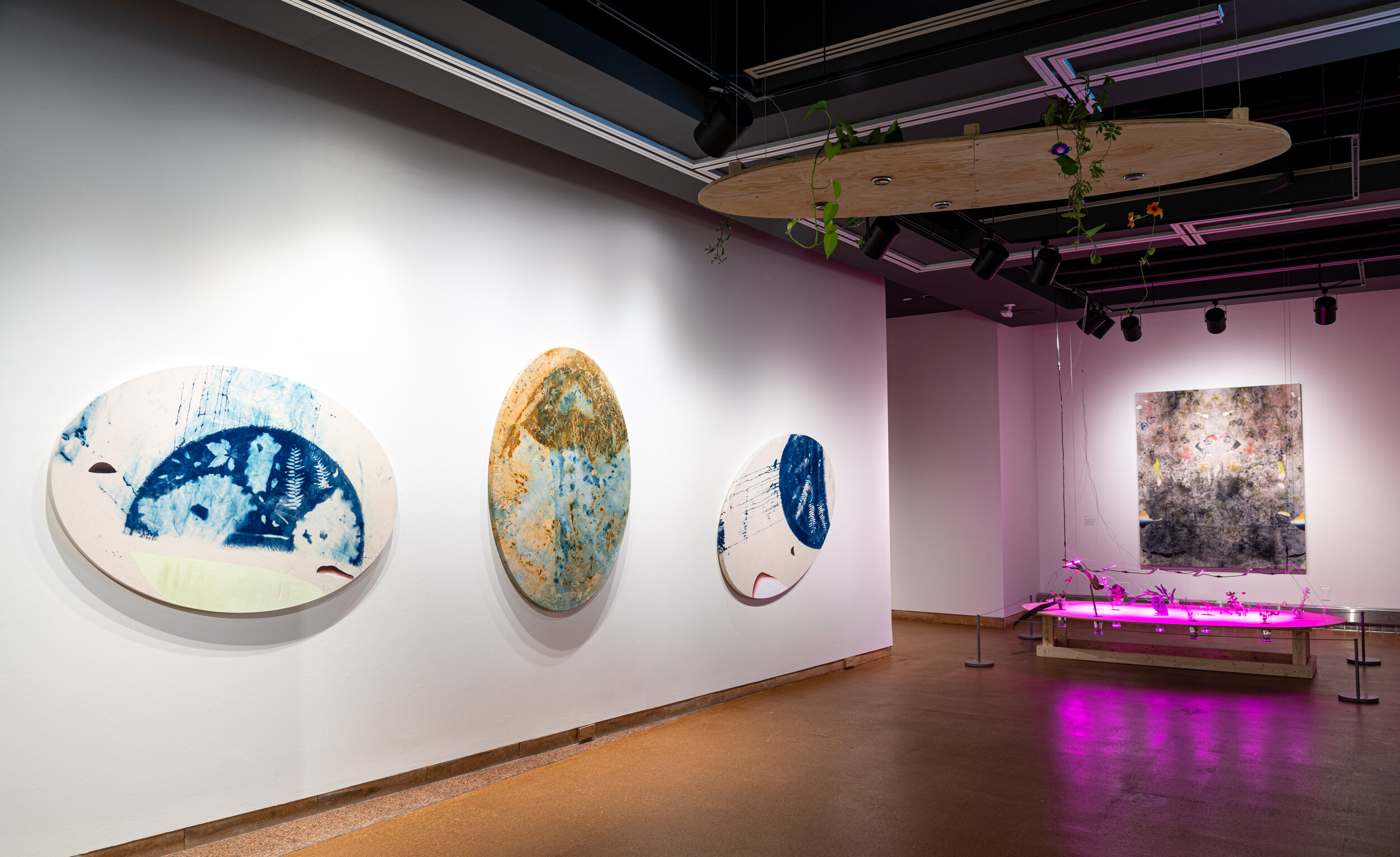 TERRAMATTER Installation, Group Exhibition at the City Hall Art Gallery, Ottawa, On, 2019