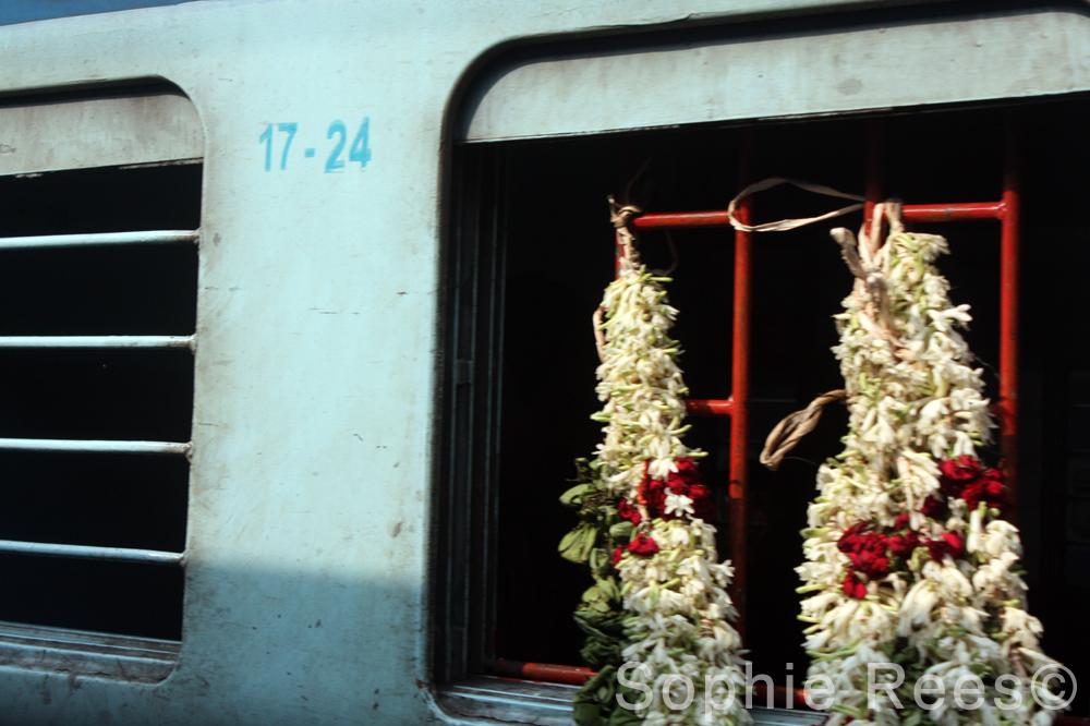 17 - 24, Kerala, 2013
