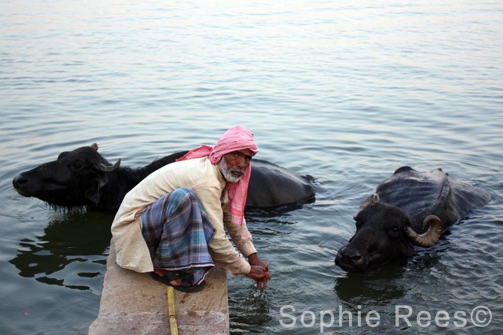 Bathing, Varanassi, 2013