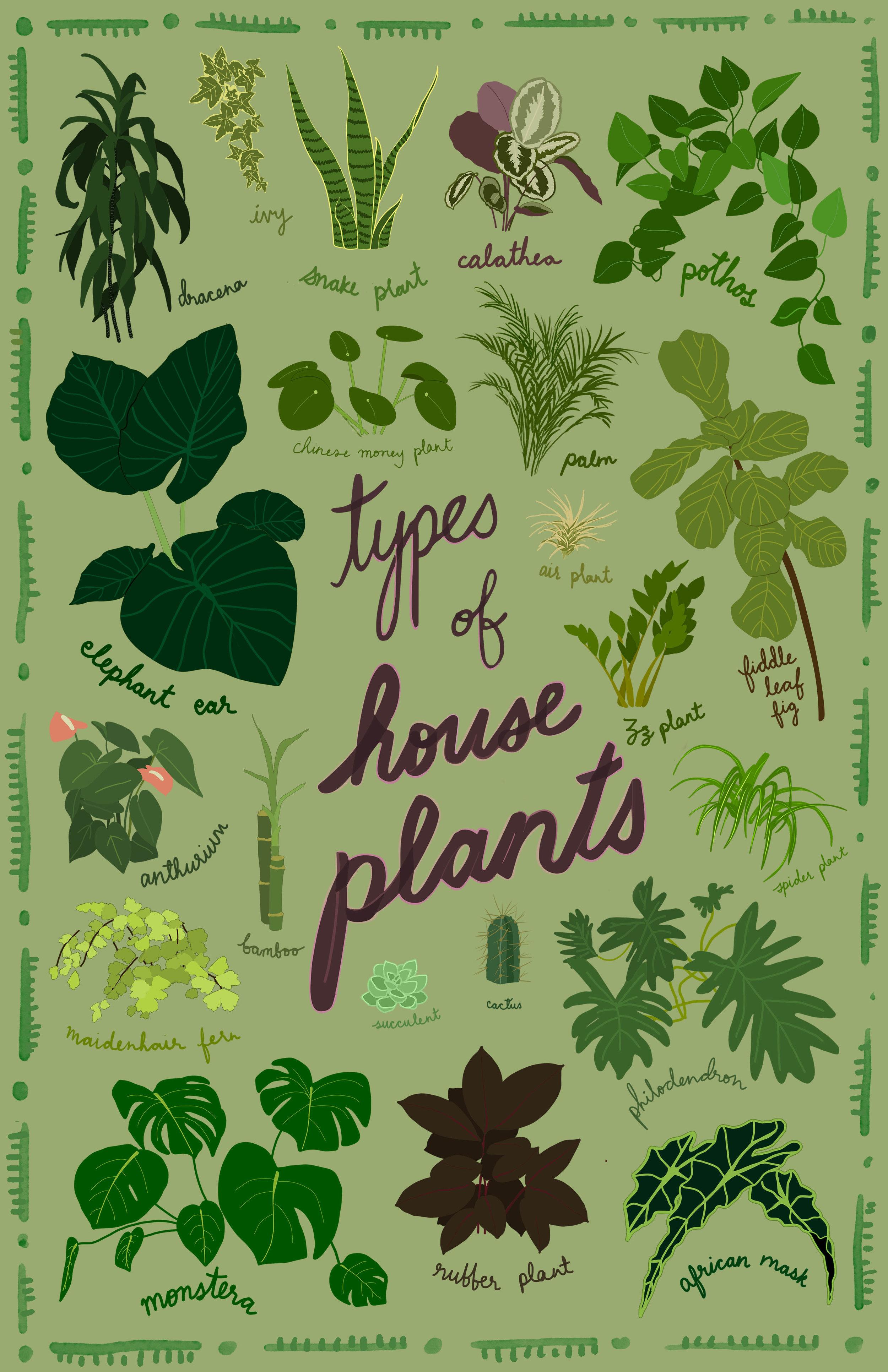plantposter.jpg