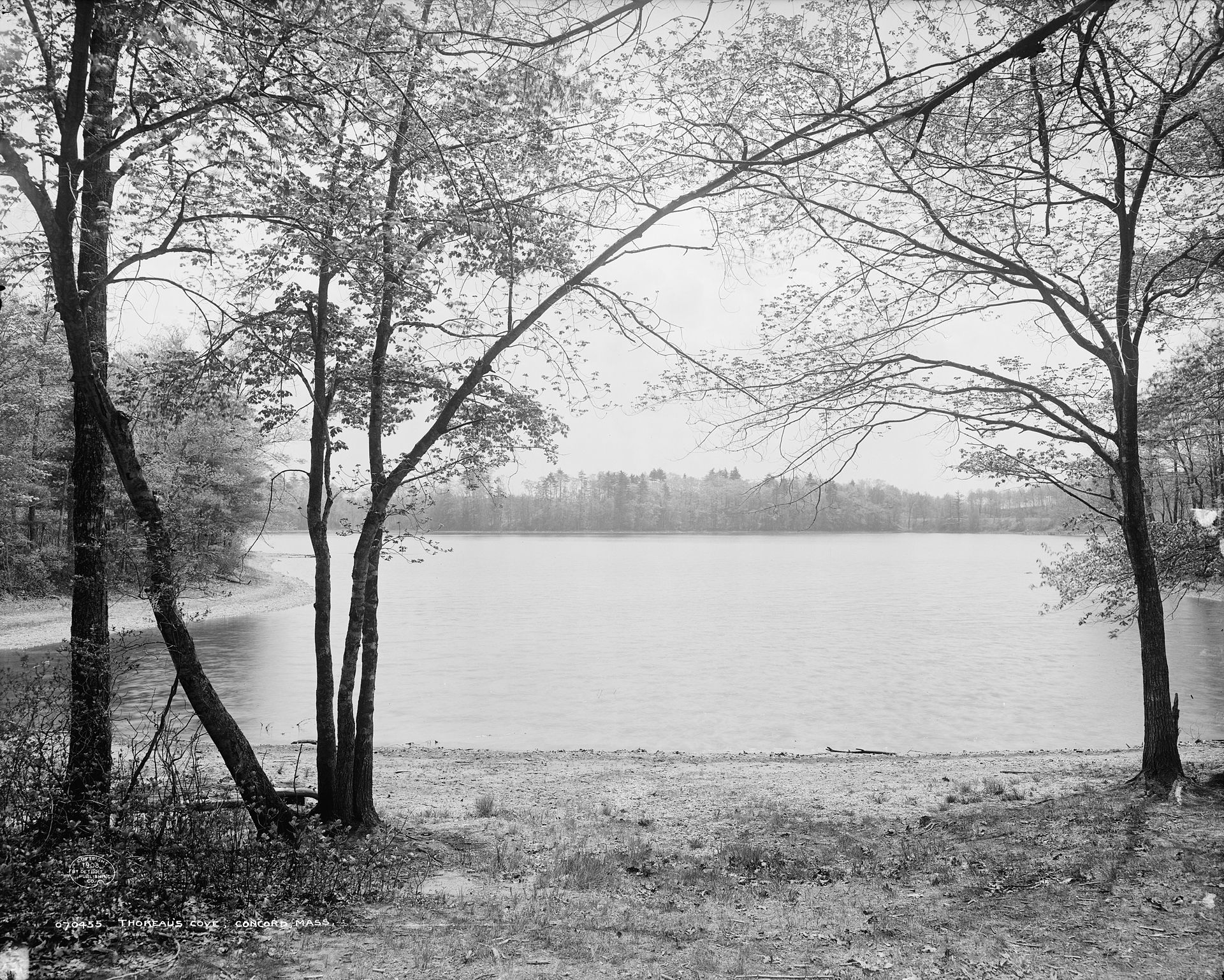 Walden_Pond.jpg