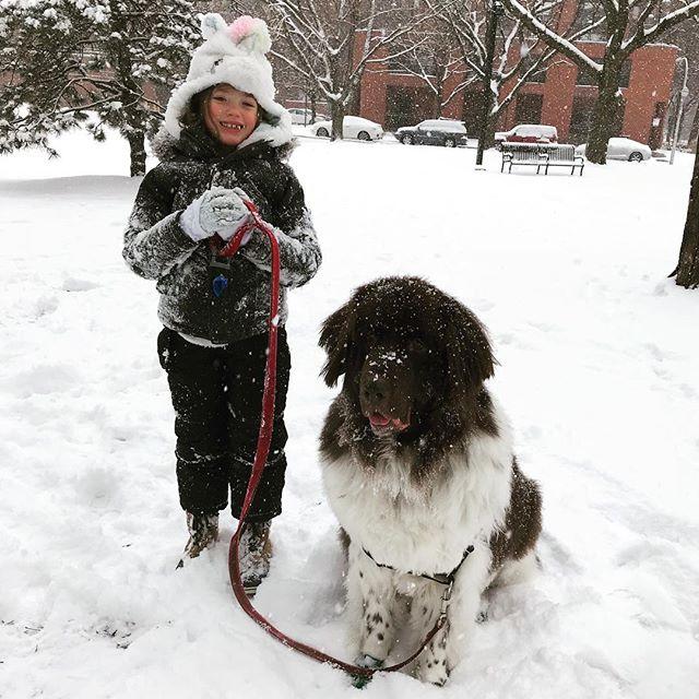 Snow much fun! #sirbruceofchicago #citygirlcoralie #coralielovesbruce #chicago #winter #snowfun
