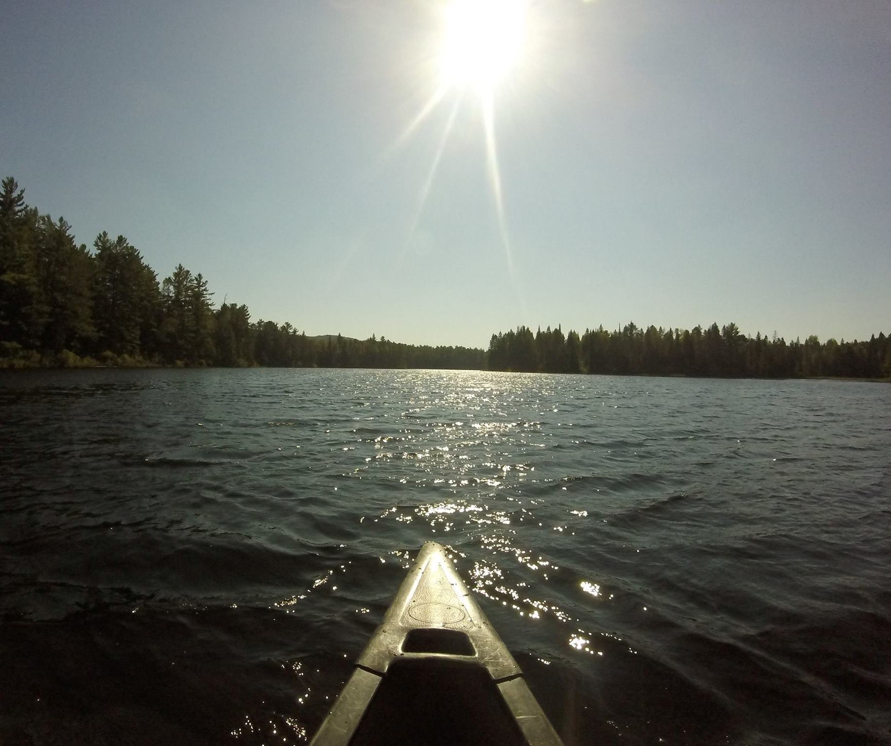 Taken from David's canoe on a beautiful lake in Algonquin Provincial Park